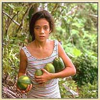 Papaya or lechosa
