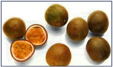 Passion fruit or Chinola